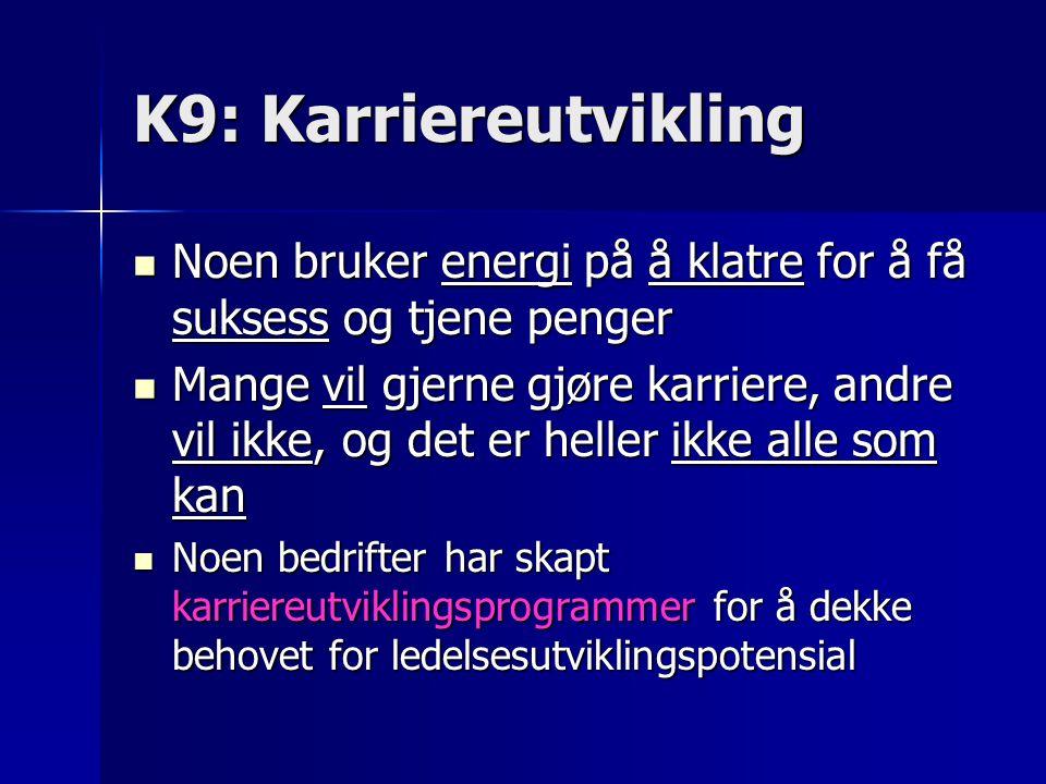 K9: Karriereutvikling Noen bruker energi på å klatre for å få suksess og tjene penger.