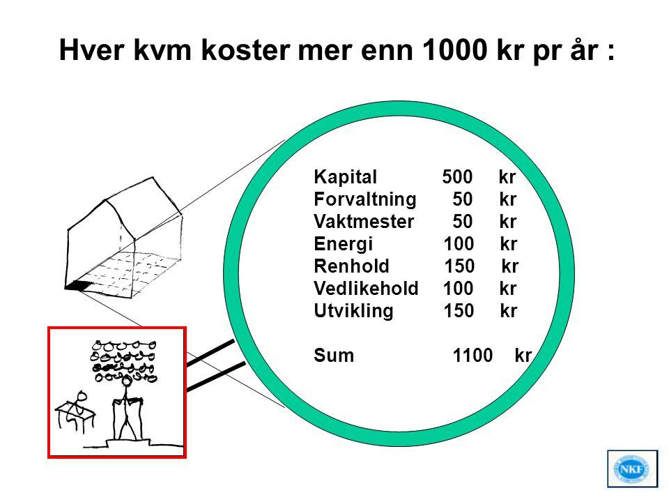 Hver kvm koster mer enn 1000 kr pr år :