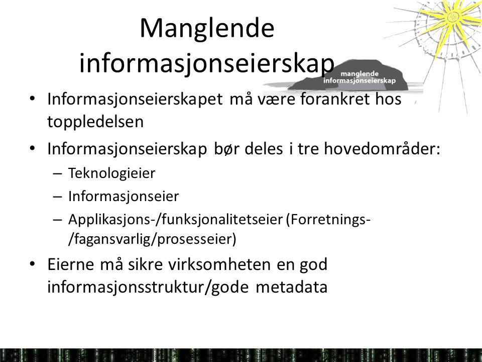 Manglende informasjonseierskap