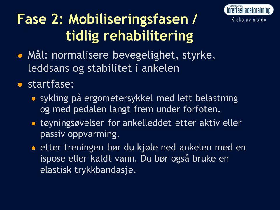 Fase 2: Mobiliseringsfasen / tidlig rehabilitering