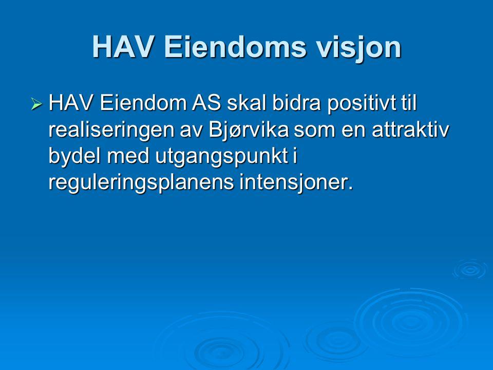 HAV Eiendoms visjon