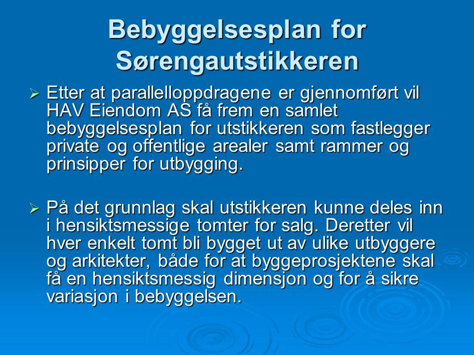 Bebyggelsesplan for Sørengautstikkeren