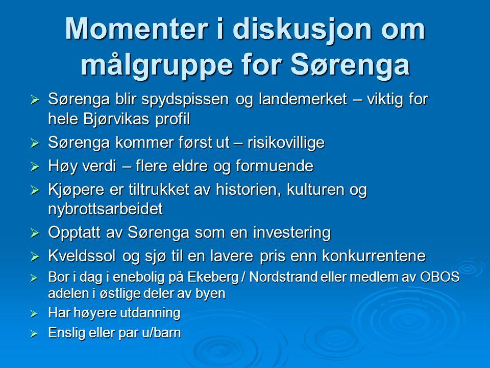 Momenter i diskusjon om målgruppe for Sørenga