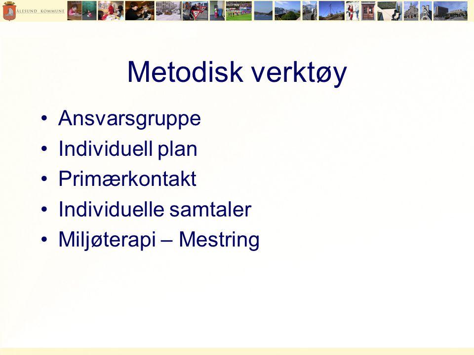 Metodisk verktøy Ansvarsgruppe Individuell plan Primærkontakt
