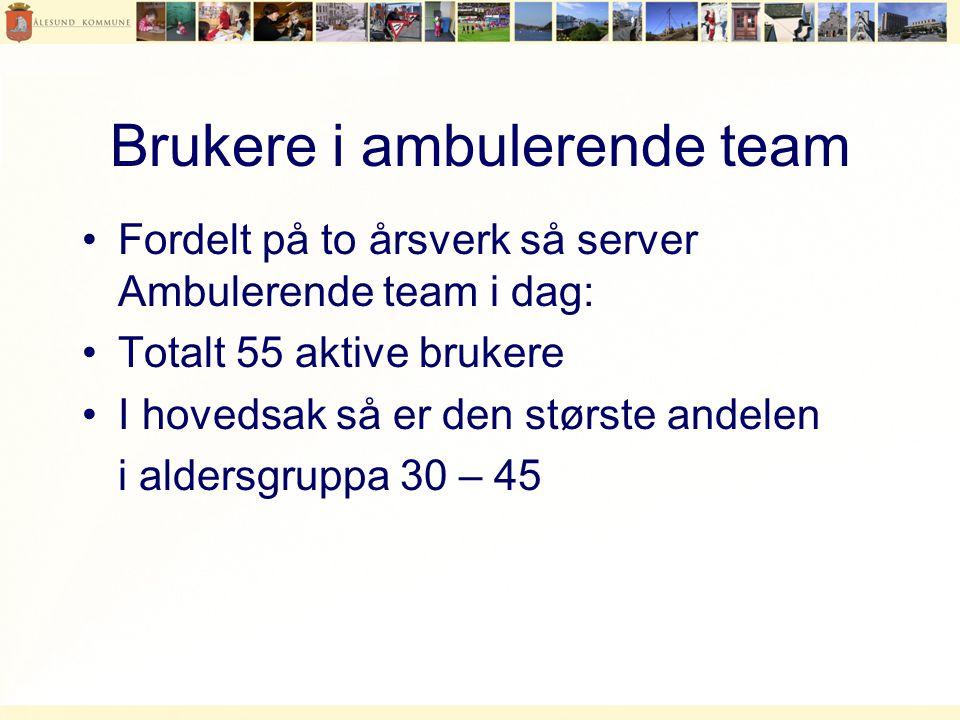 Brukere i ambulerende team