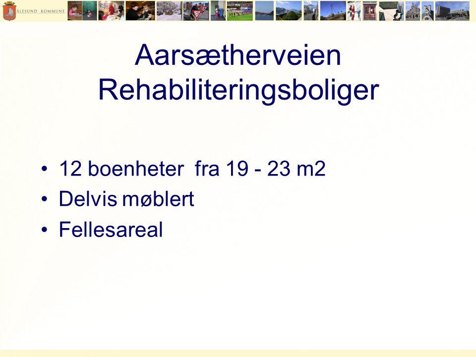 Aarsætherveien Rehabiliteringsboliger
