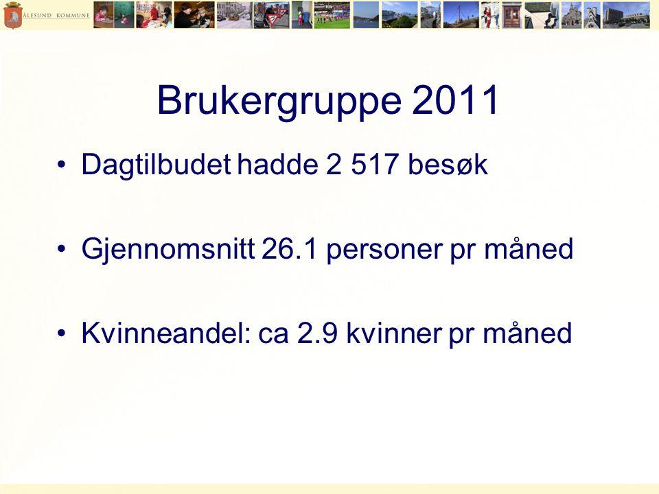 Brukergruppe 2011 Dagtilbudet hadde 2 517 besøk