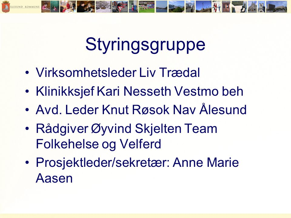 Styringsgruppe Virksomhetsleder Liv Trædal