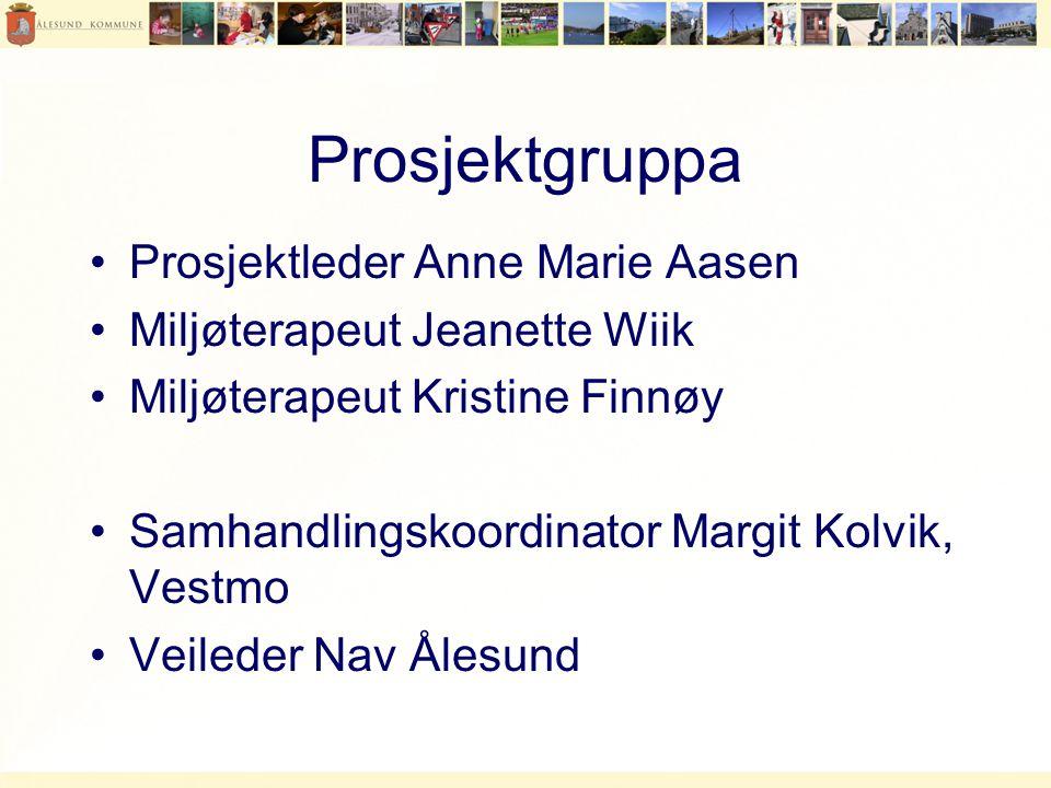 Prosjektgruppa Prosjektleder Anne Marie Aasen
