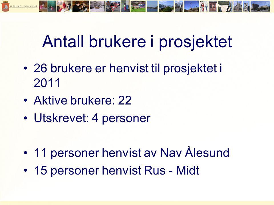 Antall brukere i prosjektet