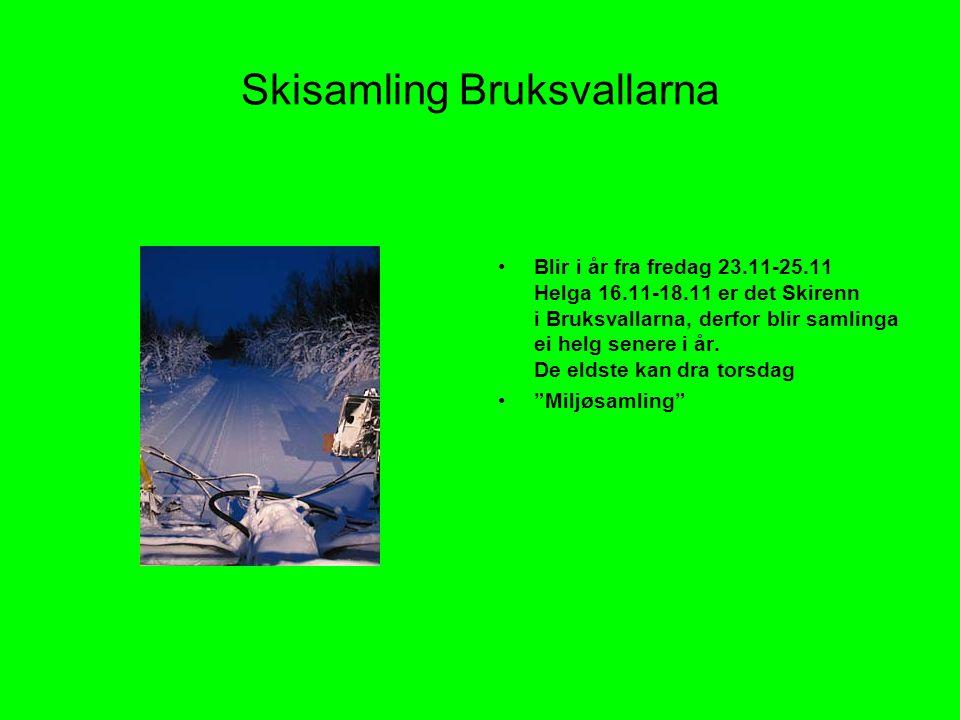 Skisamling Bruksvallarna