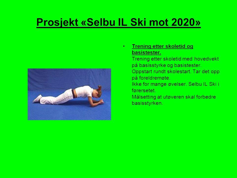 Prosjekt «Selbu IL Ski mot 2020»