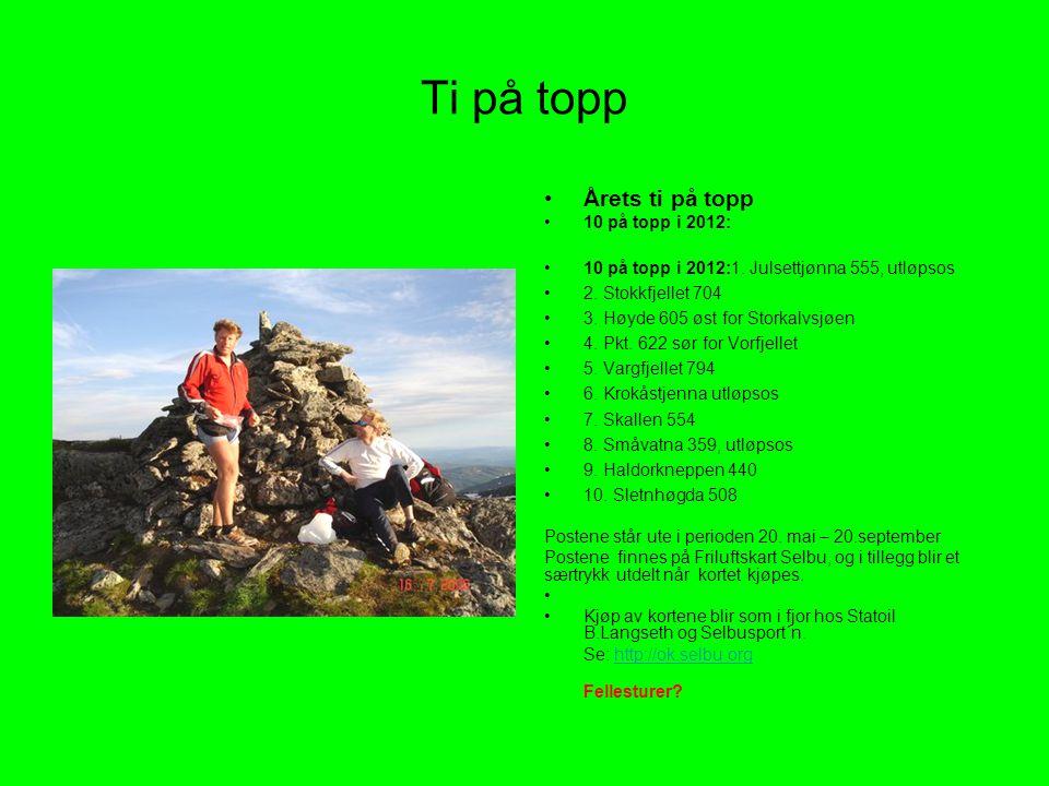 Ti på topp Årets ti på topp 10 på topp i 2012: