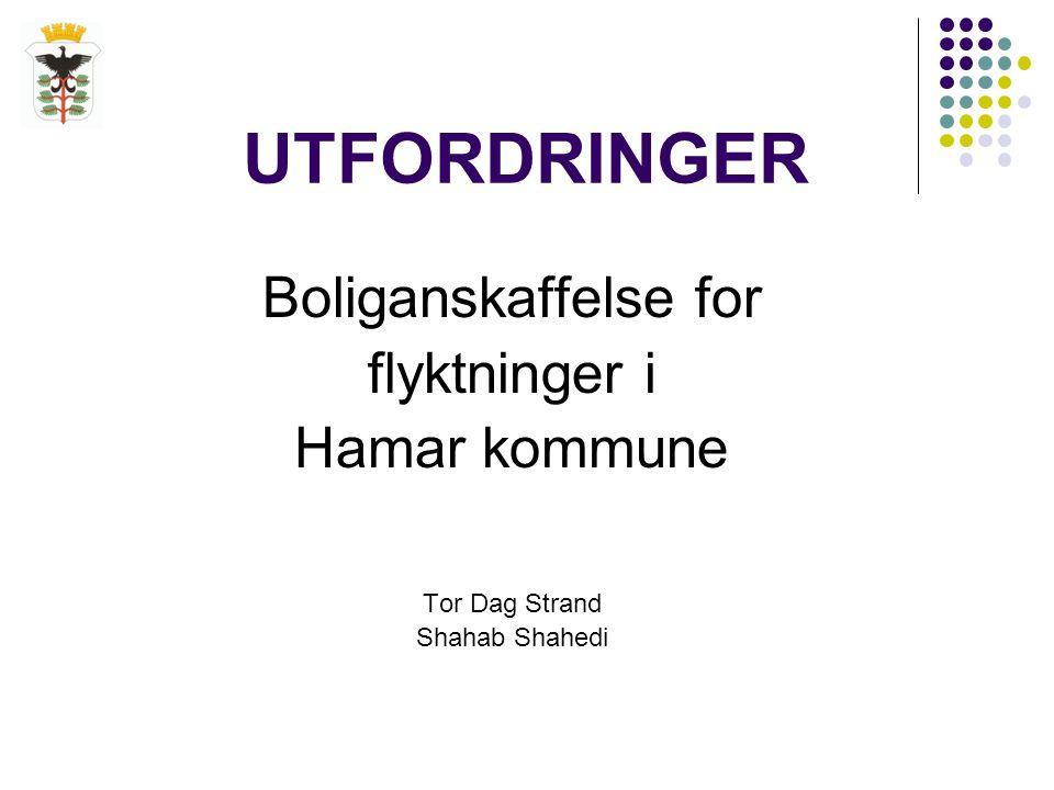 UTFORDRINGER Boliganskaffelse for flyktninger i Hamar kommune