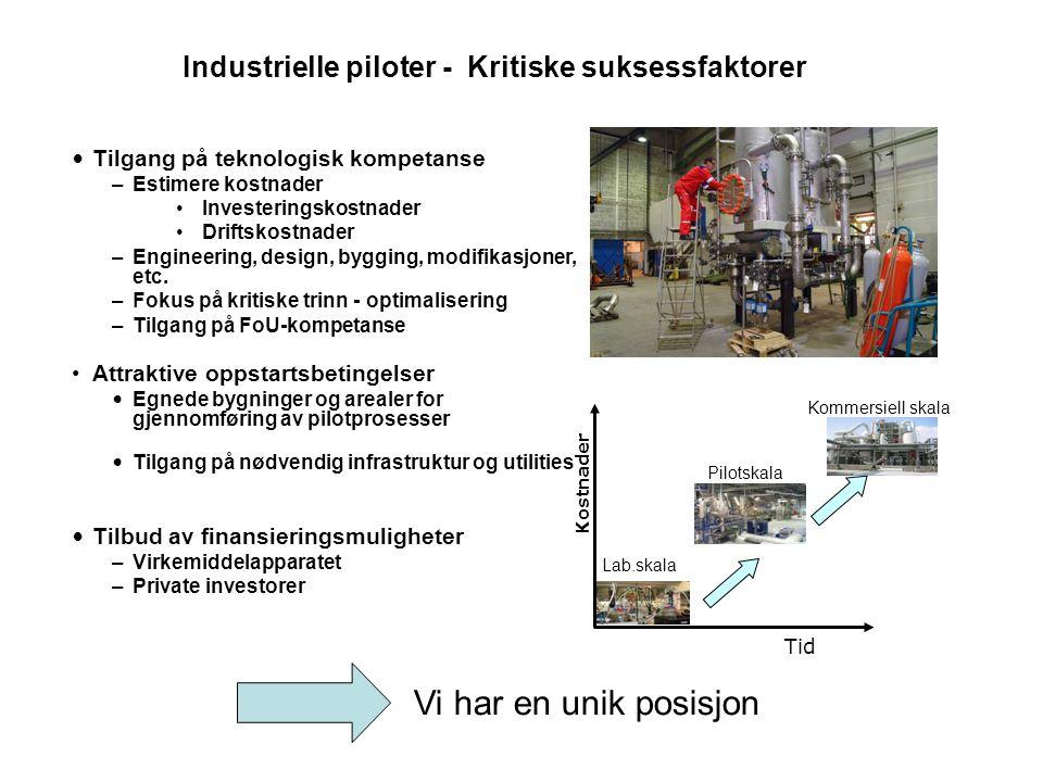 Industrielle piloter - Kritiske suksessfaktorer