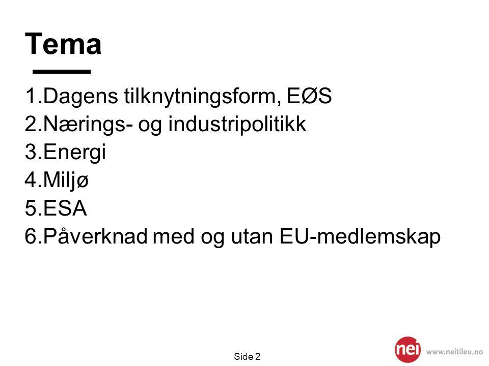 Tema Dagens tilknytningsform, EØS Nærings- og industripolitikk Energi
