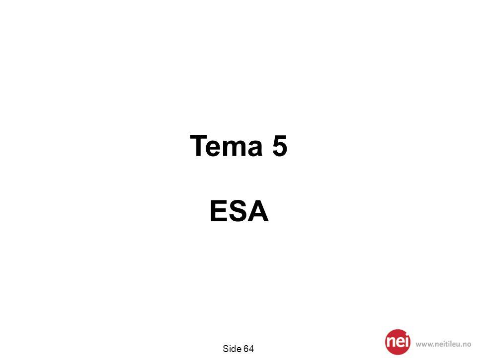 Tema 5 ESA