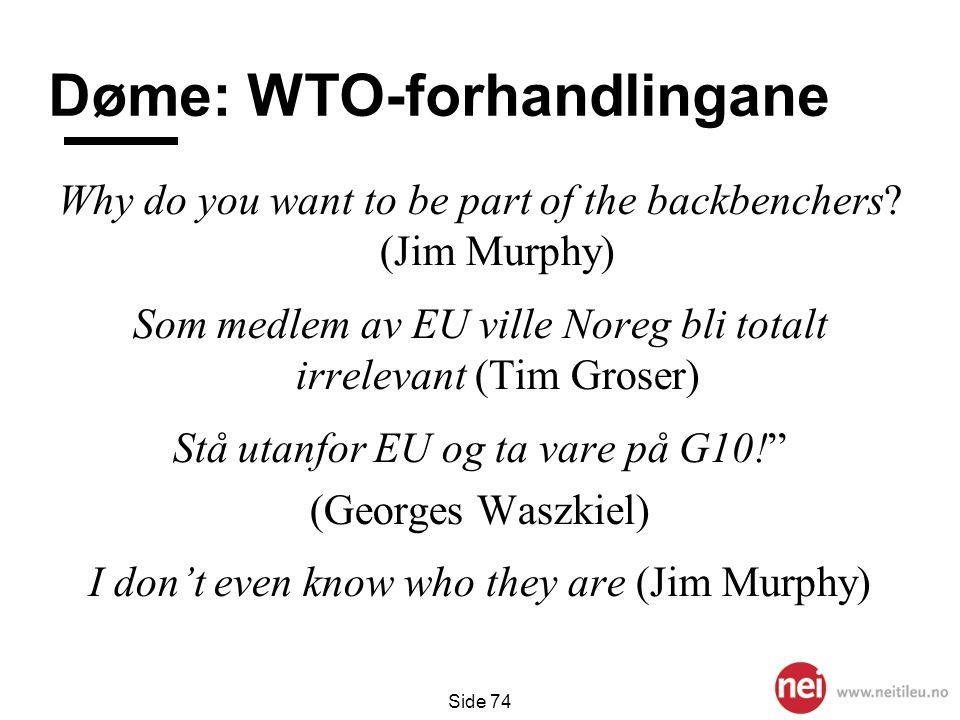 Døme: WTO-forhandlingane