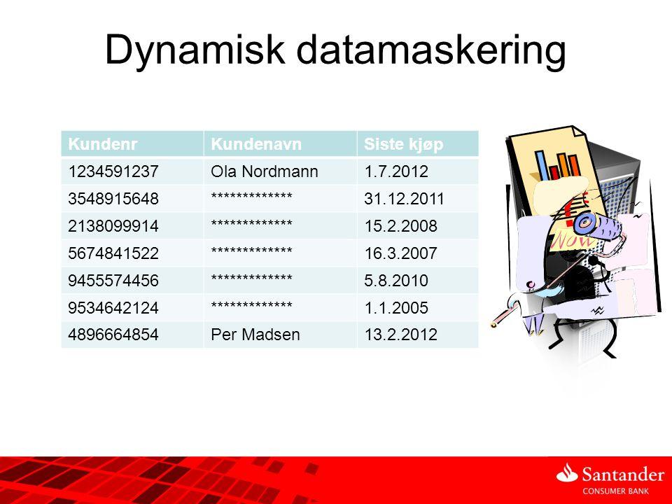 Dynamisk datamaskering