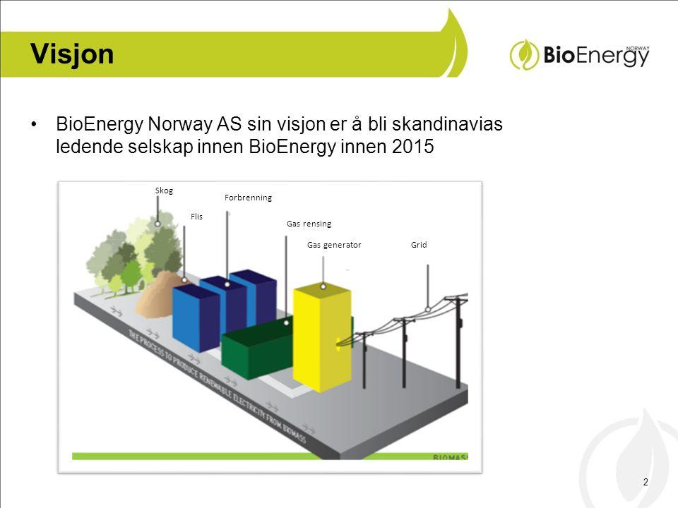 Visjon BioEnergy Norway AS sin visjon er å bli skandinavias ledende selskap innen BioEnergy innen 2015.