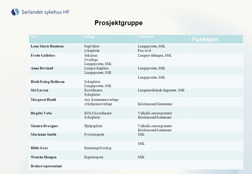 Prosjektgruppe Funksjon Lena Marie Haukom Fagtvikler/ sykepleier