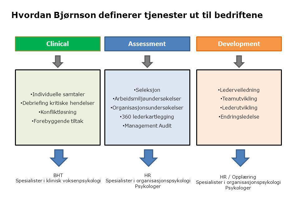 Hvordan Bjørnson definerer tjenester ut til bedriftene