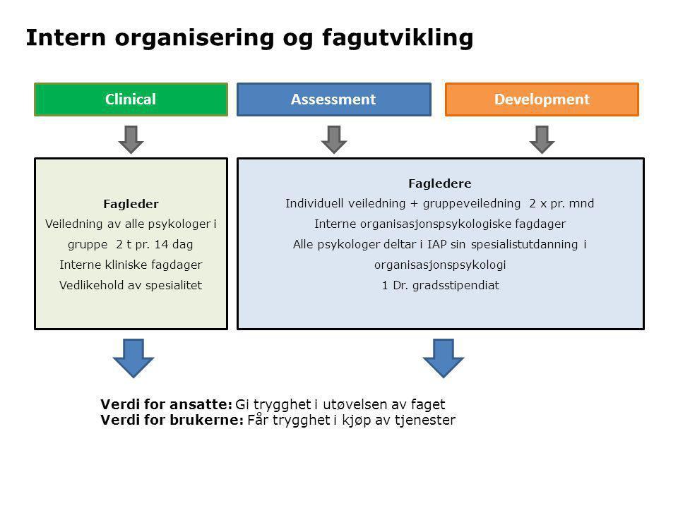 Intern organisering og fagutvikling