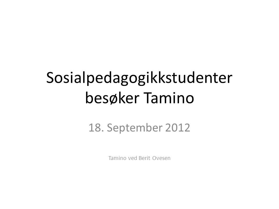 Sosialpedagogikkstudenter besøker Tamino