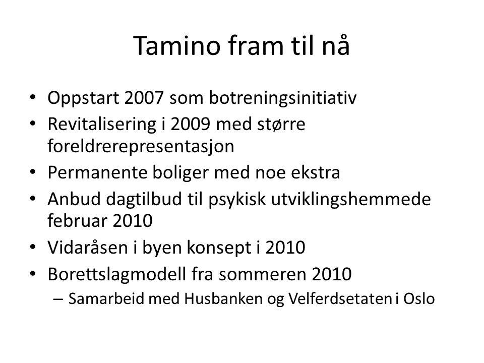 Tamino fram til nå Oppstart 2007 som botreningsinitiativ