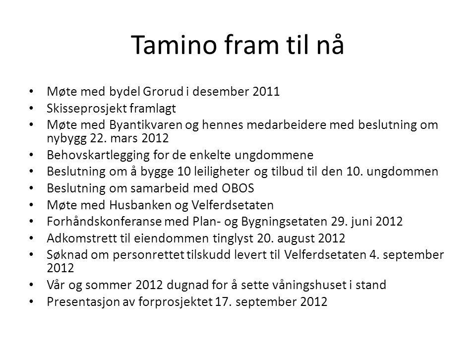 Tamino fram til nå Møte med bydel Grorud i desember 2011