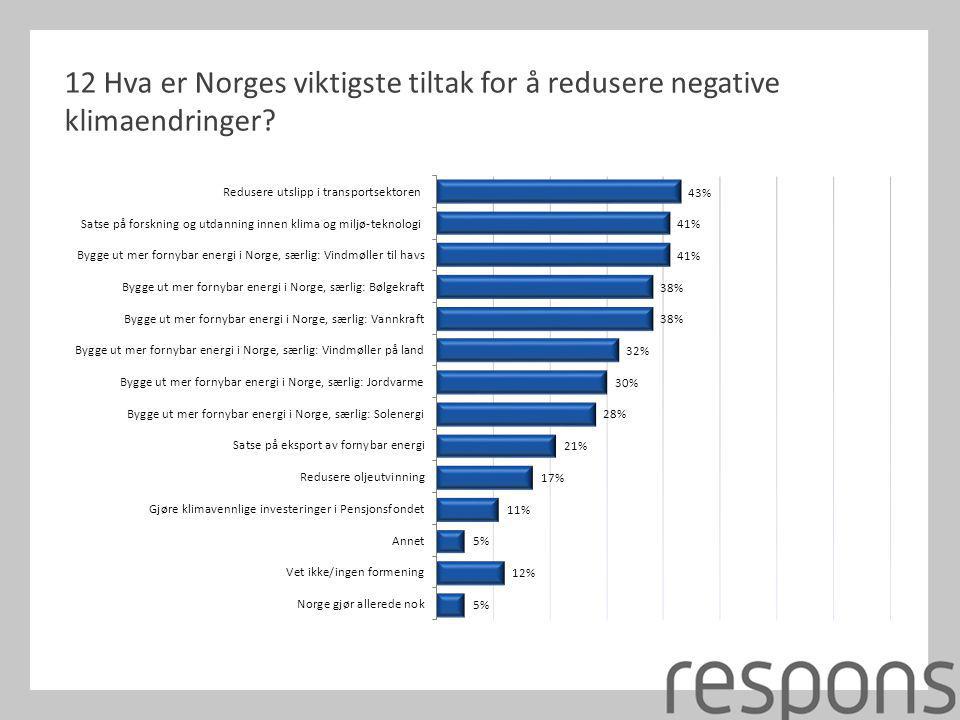 12 Hva er Norges viktigste tiltak for å redusere negative klimaendringer