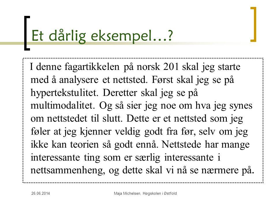 Maja Michelsen, Høgskolen i Østfold