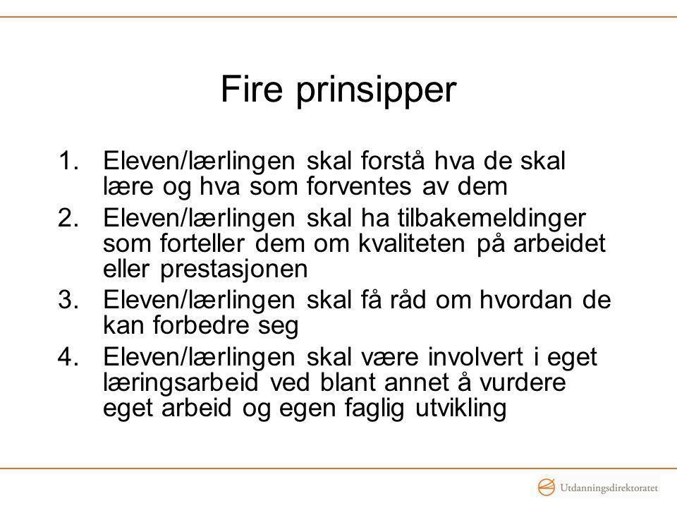 Fire prinsipper Eleven/lærlingen skal forstå hva de skal lære og hva som forventes av dem.