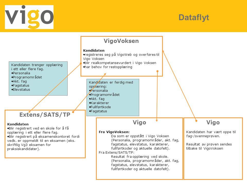 Dataflyt VigoVoksen Extens/SATS/TP Vigo Vigo Kandidaten