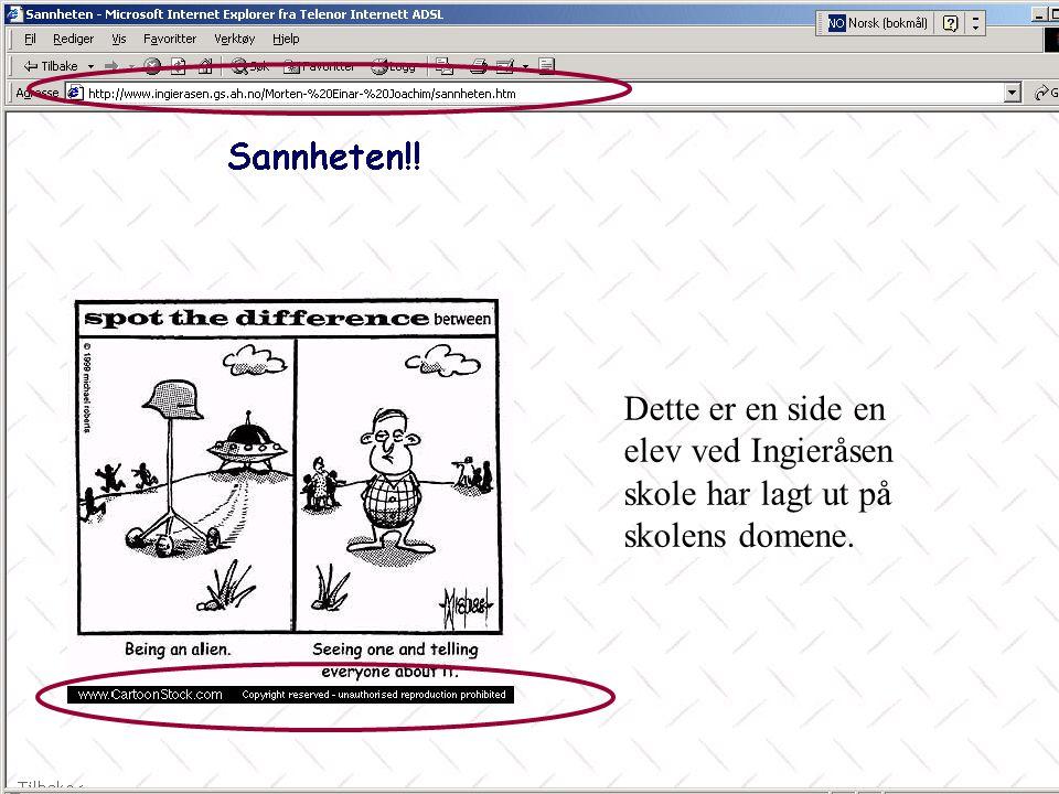 Dette er en side en elev ved Ingieråsen skole har lagt ut på skolens domene.