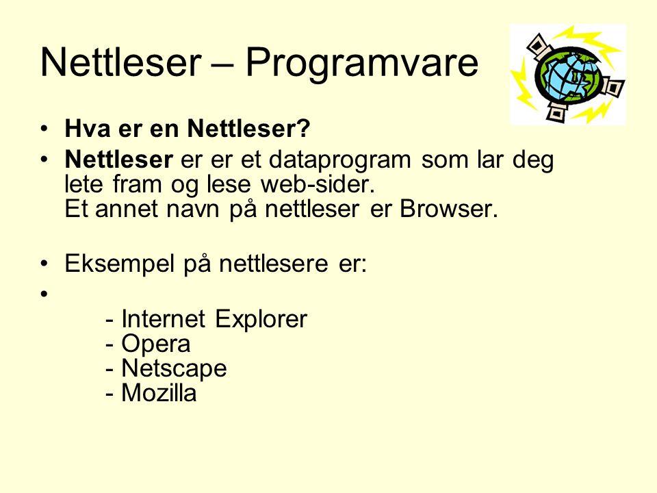 Nettleser – Programvare