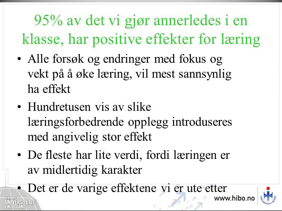 95% av det vi gjør annerledes i en klasse, har positive effekter for læring