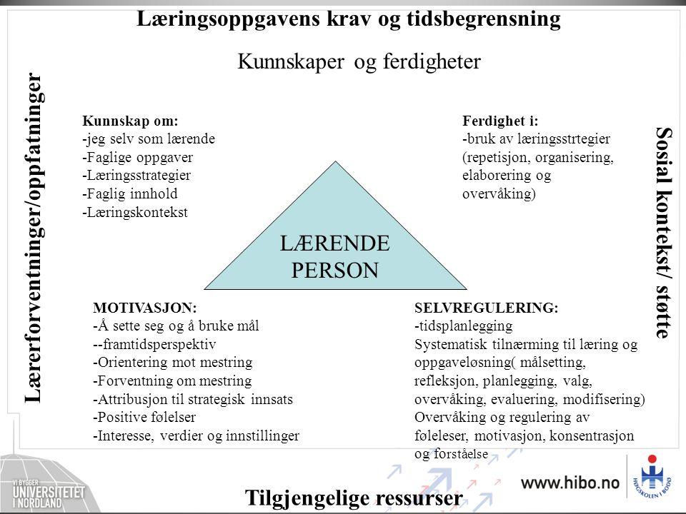 Læringsoppgavens krav og tidsbegrensning Tilgjengelige ressurser