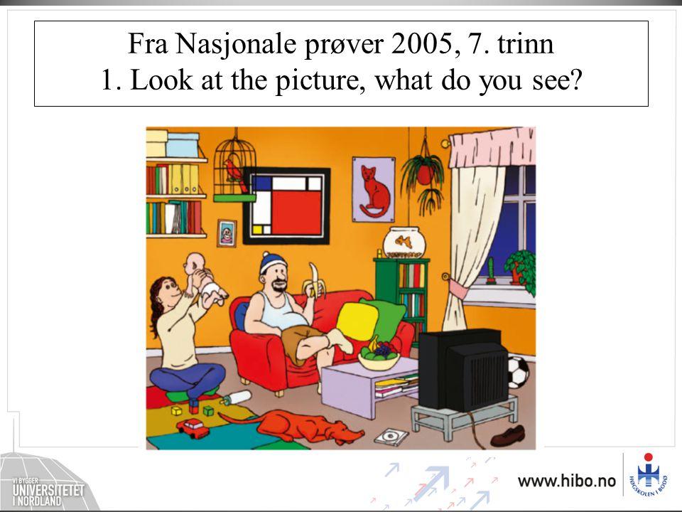 Fra Nasjonale prøver 2005, 7. trinn 1