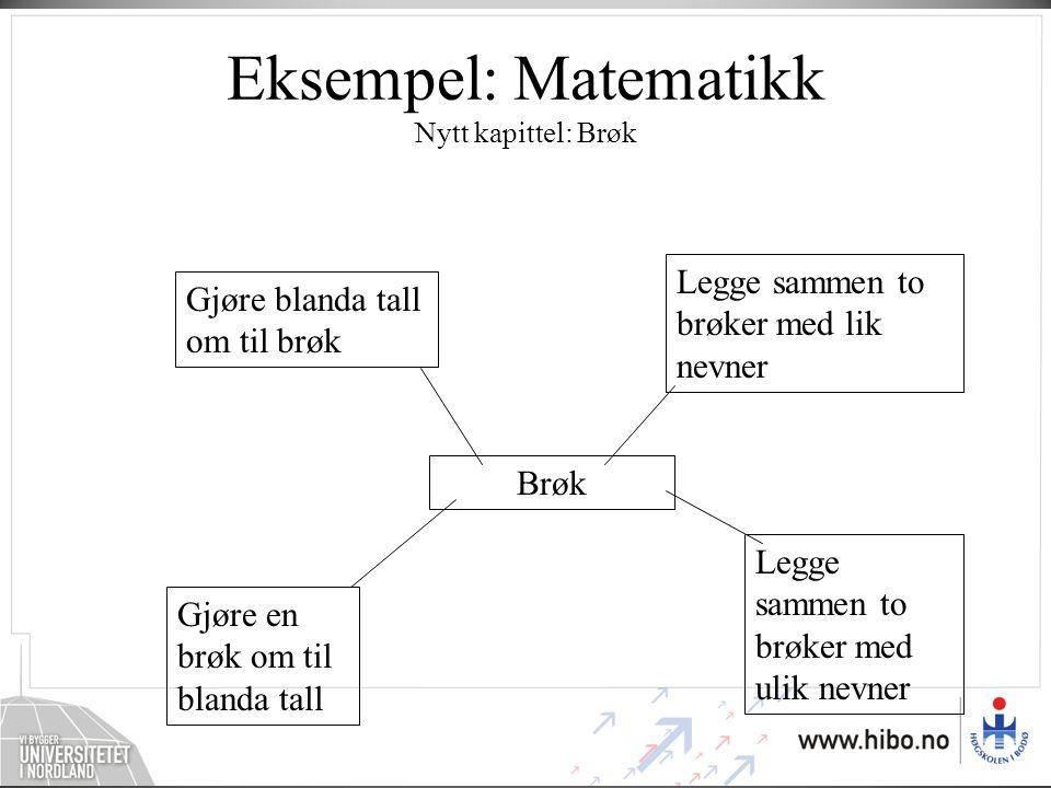 Eksempel: Matematikk Nytt kapittel: Brøk