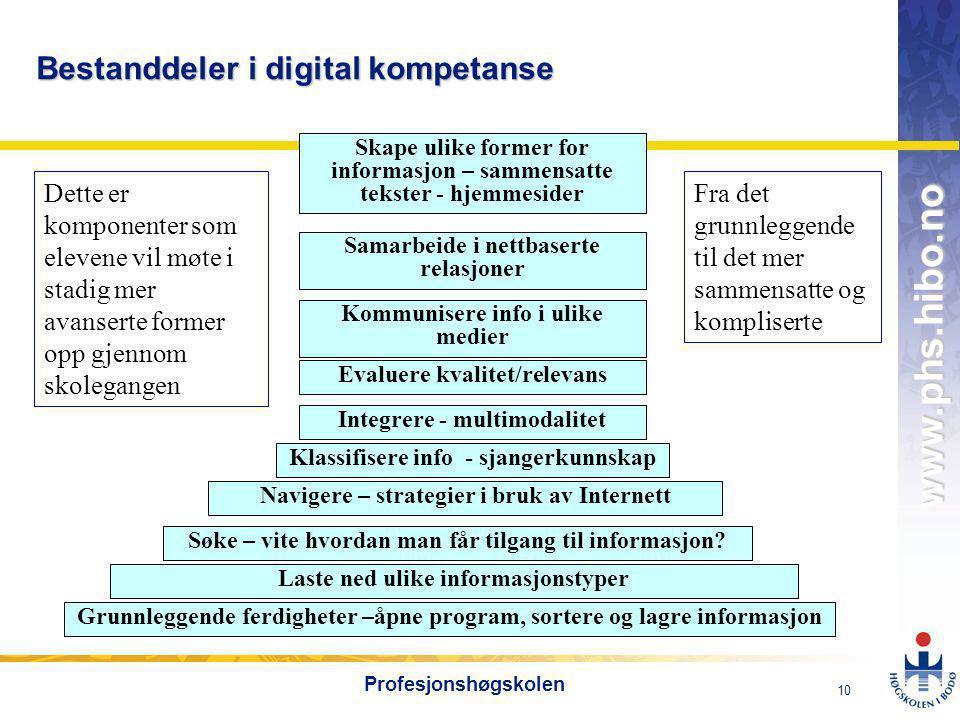 Bestanddeler i digital kompetanse