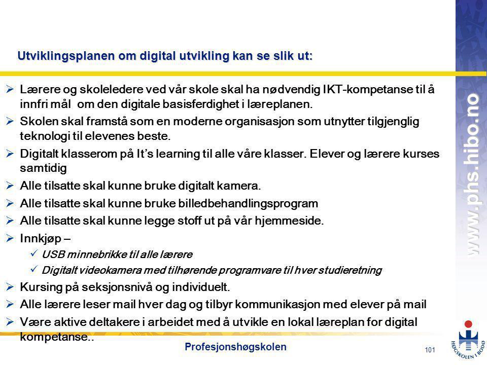 Utviklingsplanen om digital utvikling kan se slik ut: