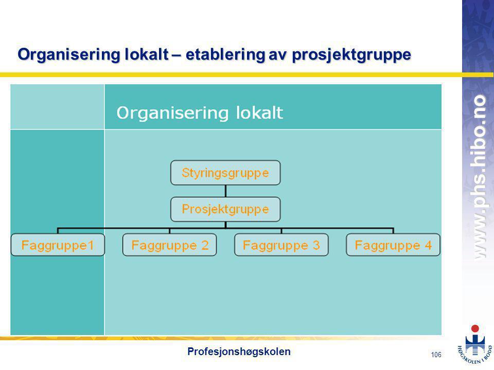 Organisering lokalt – etablering av prosjektgruppe