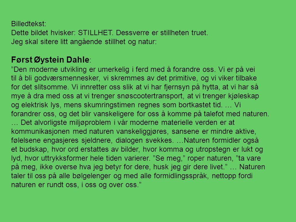 Først Øystein Dahle: Billedtekst: