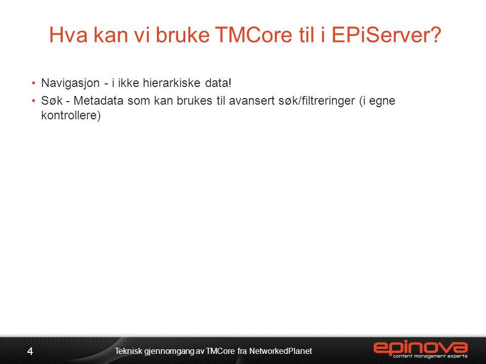 Hva kan vi bruke TMCore til i EPiServer