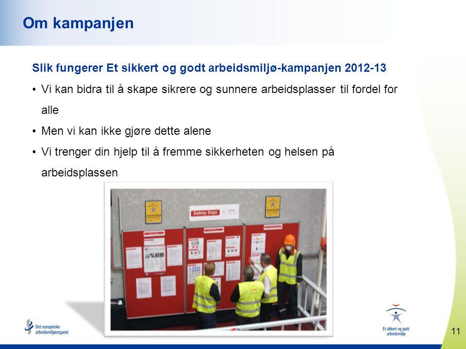 Om kampanjen Slik fungerer Et sikkert og godt arbeidsmiljø-kampanjen 2012-13.
