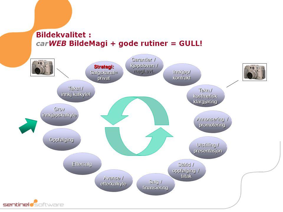 Bildekvalitet : carWEB BildeMagi + gode rutiner = GULL!