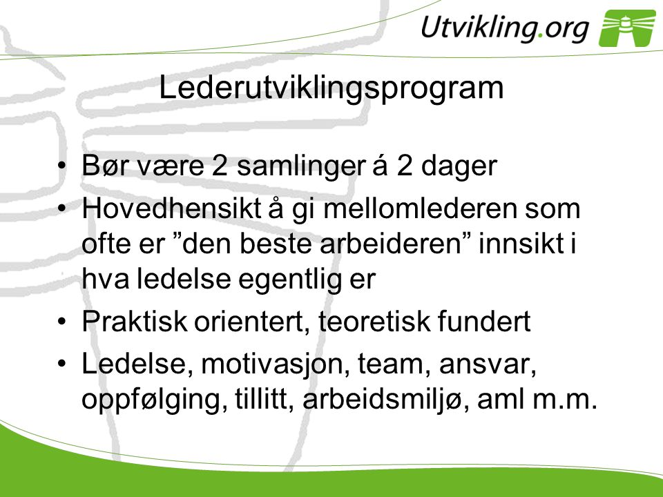 Lederutviklingsprogram