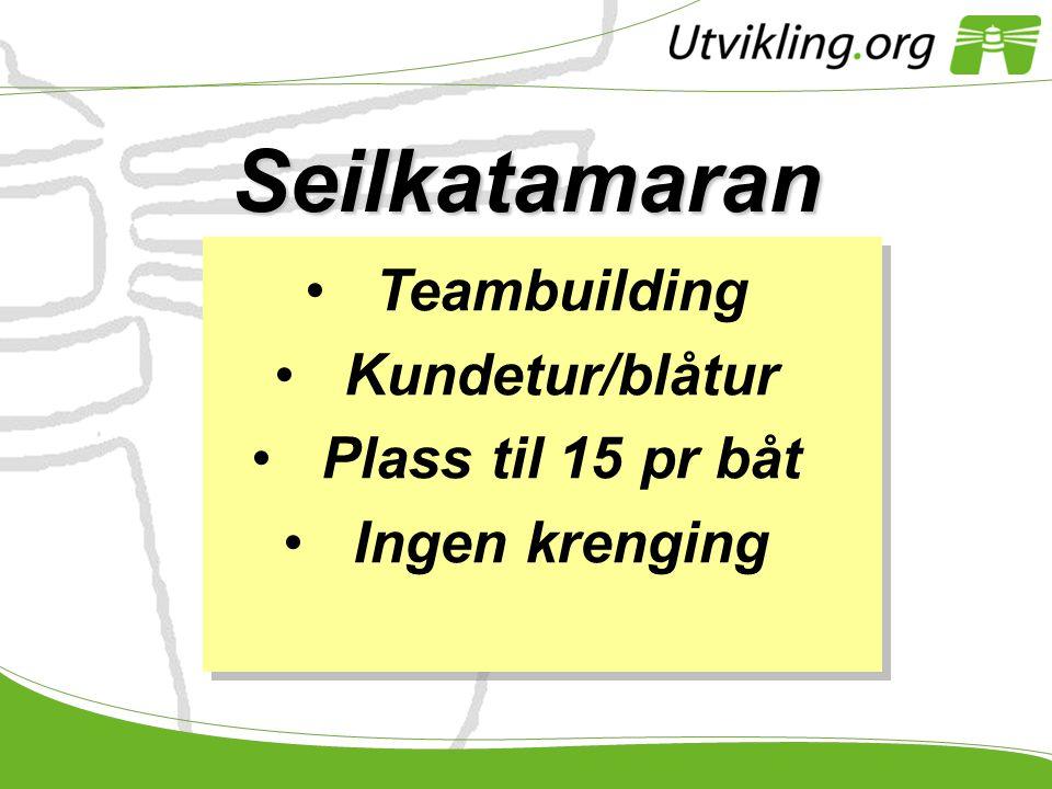 Seilkatamaran Teambuilding Kundetur/blåtur Plass til 15 pr båt