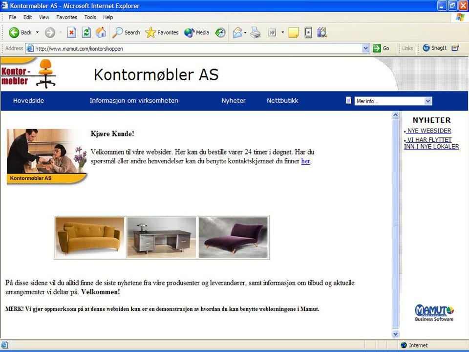 Mer enn Webshop, kommunikasjonskanal mot kundene
